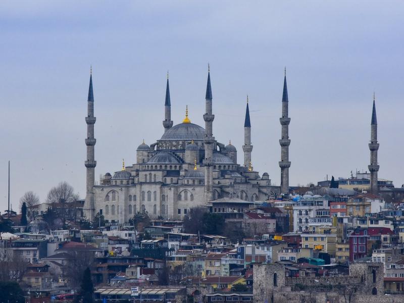 Istanbul Management Training