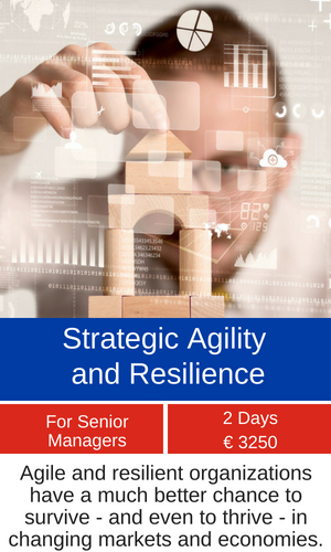 Strategic Agility and Resilience training programme MCE