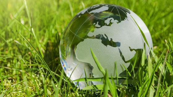sustainability management training programmes management centre europe sumas