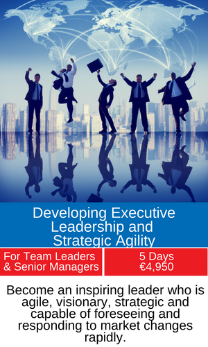 Leadership and strategic agility training programme