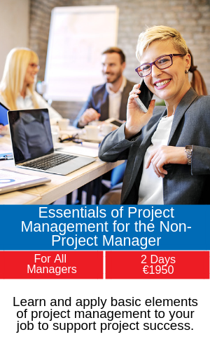 essentials of project management training programme