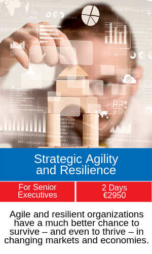 strategic agility and resilience training programme