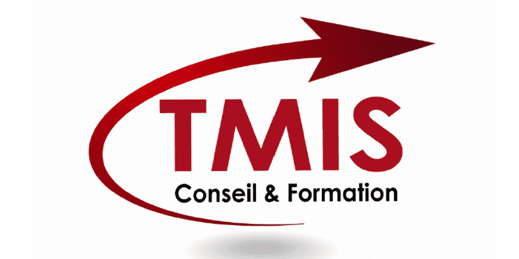 TMIS conseil and formation